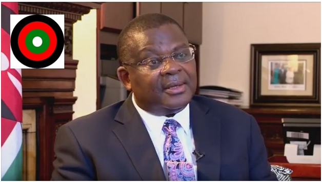 "AMBASSADOR ROBINSON GITHAE TRANSFER TO VIENNA IS A POLITE WAY OF ""BEING SHOWN THE DOOR"""