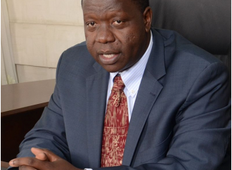 DIASPORA WOES REVISITED: DID MATIANGI COME TO SOLVE OUR ISSUES OR JUST TALKING