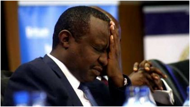 LOOTERS WILL NOT ENJOY WANANCHI SWEAT: ROTICH PURGE BEGINS.