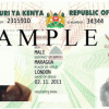 GIVE YOUR CHILDREN KENYAN DOCUMENTS-REPORT  BIRTH ABROAD